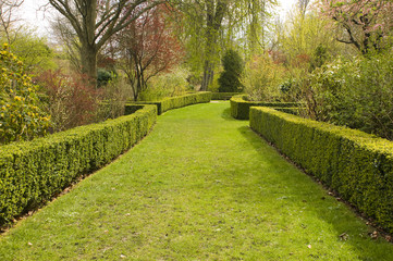 Beautiful and picturesque garden