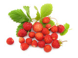 Fototapety Wild strawberries with leaves