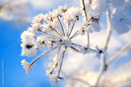 Leinwandbild Motiv winter memories