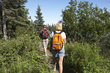 USA, Alaska, couple walking along trail in forest