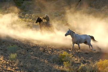 Two Cowboys galloping and roping through the desert