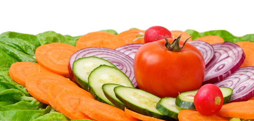 Tomato with cucumbers, onions, carrots, lettuce and radishes
