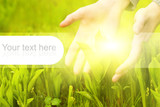 Human hands touching green grass. Graphic design elements on it poster