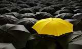 Fototapeta ochrony - deszcz - Inne Przedmioty