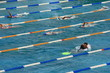 Swimmers training in a swiming pool