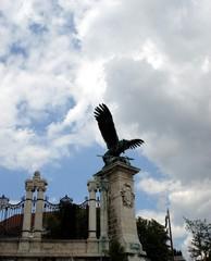 mythological falcon