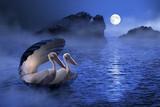 Fototapete Shell - Mond - Vögel