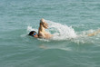 A man swimming front crawl in the sea.