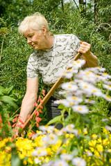 Work in a garden