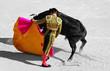 les couleurs de la corrida - 7745928