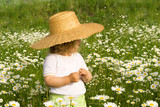Little girl on the daisy field poster