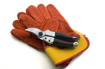 pruning shears and garden gloves