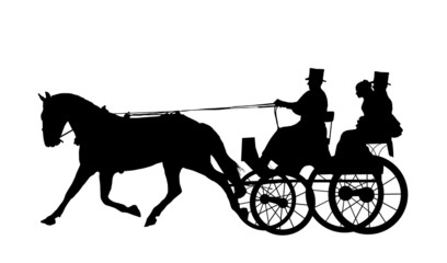 Horse And Carriage Wedding 5
