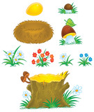 Mushrooms, flowers, stump and nest poster
