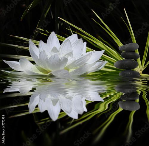 Leinwandbild Motiv parfum de zen