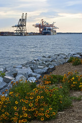 Shipyard and Flowers