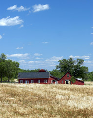 Red Farm Buildings