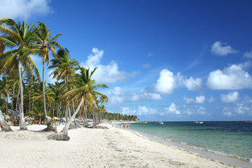 Resort beach in Punta Cana, Dominican Republic
