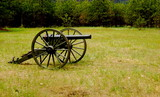Cannon in Field