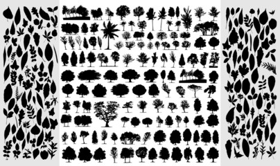 Big collection of different vector trees and leafs