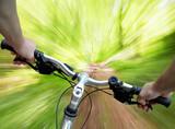 Fototapety Mountain biking in the forest