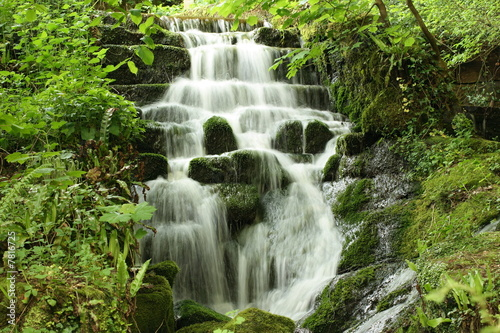 canvas print picture WaterFall in the Woods