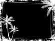 grunge palm tree background