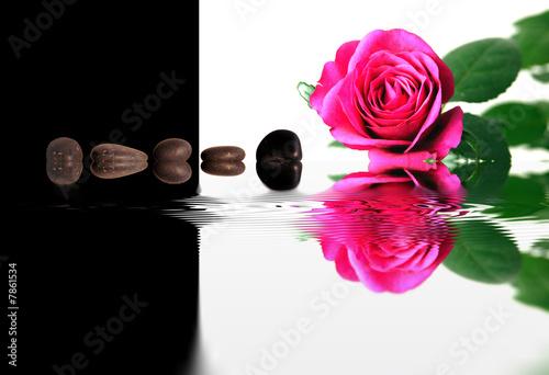 Leinwanddruck Bild Rose et galets