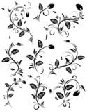 Collect flower border, element for design, vector illustration