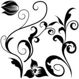 Floral elements J - popular floral segments poster