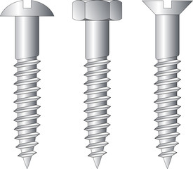 Vector illustration of three different screws