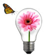flower in the light bulb