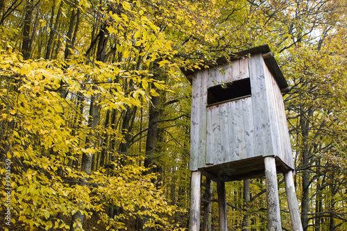 Tower hide for birdwatching