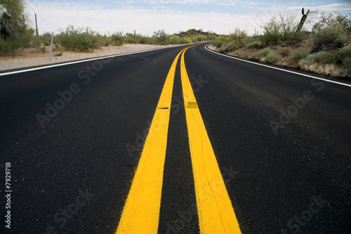 road in the Organ Pipe National Monument, Arizona, USA