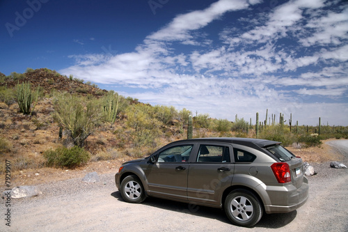 car in the Organ Pipe National Monument, Arizona, USA
