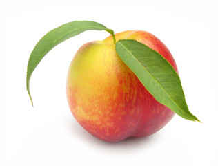 Nectarine with leaves