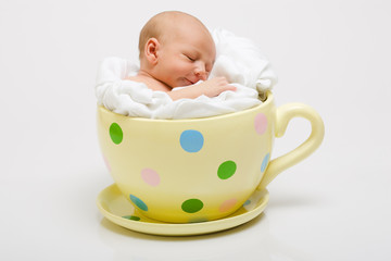 Newborn in Yellow Cup