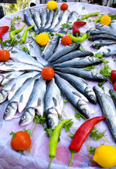 sea bass.....