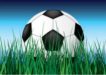 Soccer ball on grass.