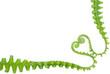 fern in love shape