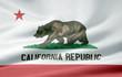 Kalifornische Flagge