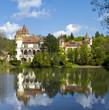 Castle Zinkovy