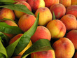Quadro Peaches perfect with leaves