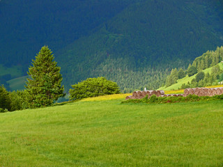 Schwarzwald Ansicht
