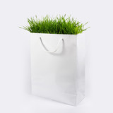 Green grass in white paper bag - Environment Concept