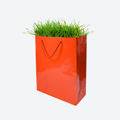 Green grass in red paper bag - Environment Concept