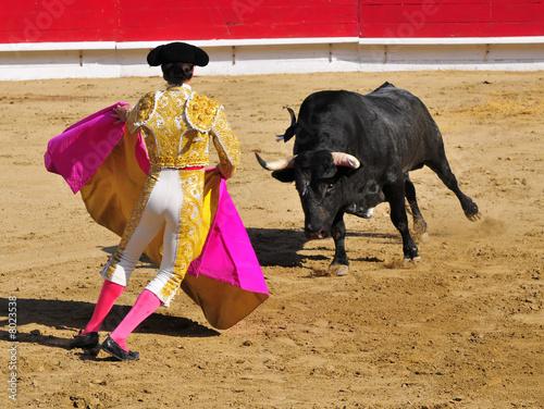Matador facing Bull - 8023538