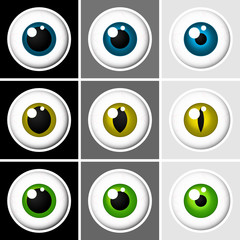 Eyeballs human and animal - vector
