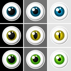 Eyeballs human and animal - vector