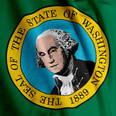 Washington Flag Closeup